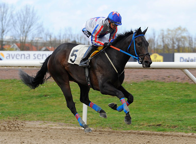 Upsadaisy vinner lätt med Per-Anders Gråberg | Jägersro 140413 | Foto: Stefan Olsson / Svensk Galopp