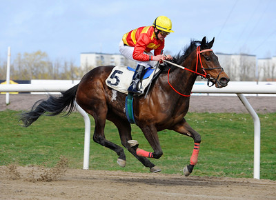 Molamento vinner lätt för Manuel Santos | Jägersro 140413 | Foto: Stefan Olsson / Svensk Galopp