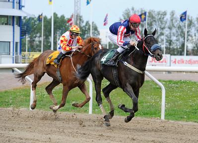 Certo Cito och Oliver Wilson vinner före Moulin Rouge   Jägersro 140521   Foto: Stefan Olsson / Svensk Galopp