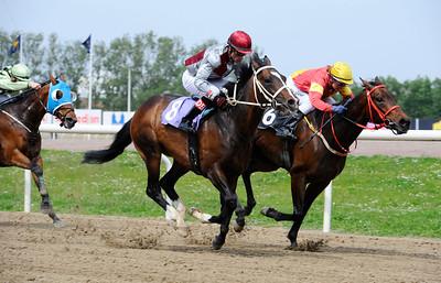 Margaux och Dayverson De Barros (närmast) vinner före What Legend och Bowater.   Jägersro 140521   Foto: Stefan Olsson / Svensk Galopp