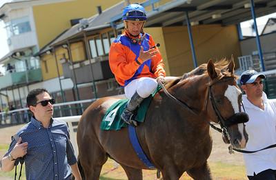 Energia Dust och Rafael De Oliveira tillsammans med Fabricio Borges | Jägersro 140618 | Foto: Stefan Olsson / Svensk Galopp