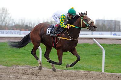 Spirit of Life vinner med Elione Chaves | Jägersro 141029 | Foto: Stefan Olsson / Svensk Galopp