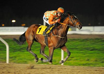 Duke Derby vinner med Per-Anders Gråberg   Jägersro 141109   Foto: Stefan Olsson / Svensk Galopp