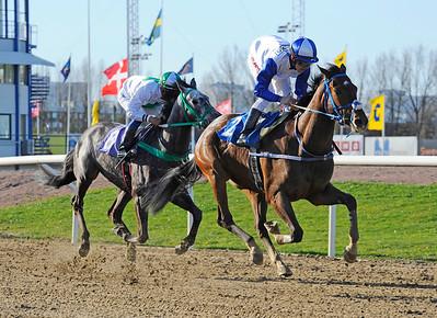 Thewaytoyou vinner med Shane Karlsson | Jägersro 150427 | Foto: Stefan Olsson / Svensk Galopp