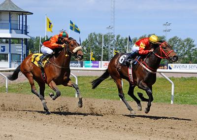 What Legend och Valmir De Azeredo vinner före Kookaburra | Jägersro 150610 | Foto: Stefan Olsson / Svensk Galopp