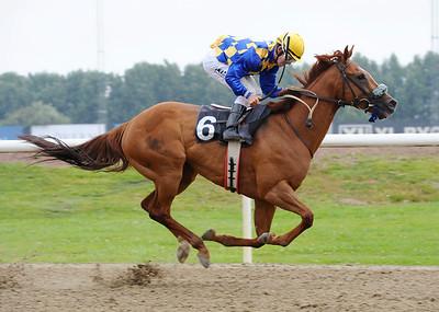 Up Up Euphoria vinner med Shane Karlsson | Jägersro 160803 | Foto: Stefan Olsson / Svensk Galopp