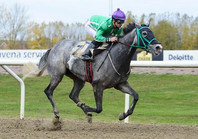Rosilla vinner med Elione Chaves  Jägersro 161026 Foto: Stefan Olsson / Svensk Galopp