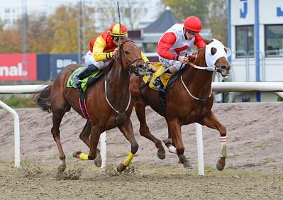 Jammy Action och Jacob Johansen vinner före Finial  Jägersro 161026 Foto: Stefan Olsson / Svensk Galopp