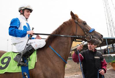 Zacapa och Shane Karlsson vinner före My Dream och Faffa Jägersro 161026 Foto: Stefan Olsson / Svensk Galopp