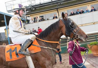 Last Reference och Kajsa Lindsjö  Jägersro 161026 Foto: Stefan Olsson / Svensk Galopp