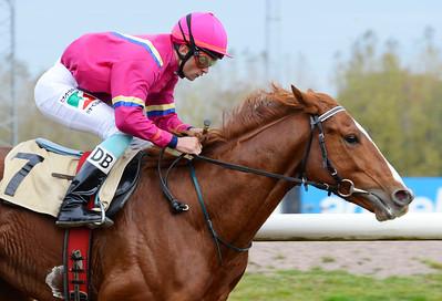 Saarim vinner med Dayverson De Barros Jägersro 161026 Foto: Stefan Olsson / Svensk Galopp