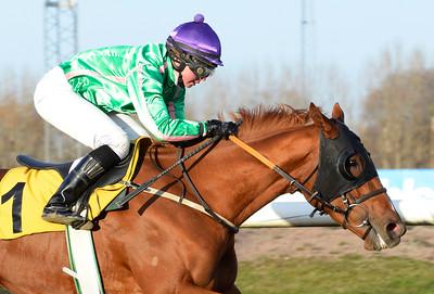 La Maitresse vinner med Kajsa Lindsjö  Jägersro 161113 Foto: Stefan Olsson / Svensk Galopp