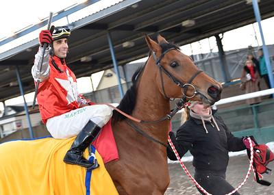 Carambola Star och Martin Rodriguez Jägersro 161113 Foto: Stefan Olsson / Svensk Galopp