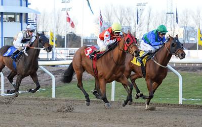 Carambola Star och Martin Rodriguez vinner före The Kid Jägersro 161113 Foto: Stefan Olsson / Svensk Galopp