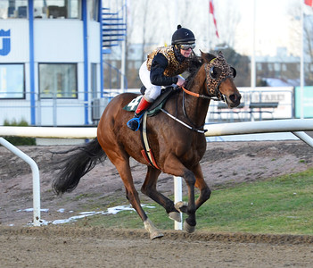 IKC Kick Back vinner med Charlotta Ericsson   Jägersro 161113 Foto: Stefan Olsson / Svensk Galopp