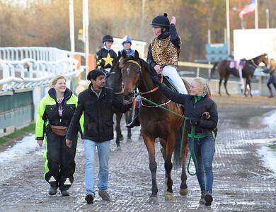 IKC Kick Back på väg till vinnarcirkeln  Jägersro 161113 Foto: Stefan Olsson / Svensk Galopp