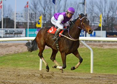 Inittowinit vinner med Ina Veronika Toverud Jägersro 161120 Foto: Stefan Olsson / Svensk Galopp