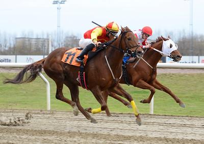 Finial och Elione Chaves (närmast) vinner före Jammy Action  Jägersro 161120 Foto: Stefan Olsson / Svensk Galopp