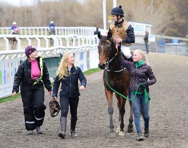 IKC Kick Back på väg till vinnarcirkeln Jägersro 161120 Foto: Stefan Olsson / Svensk Galopp