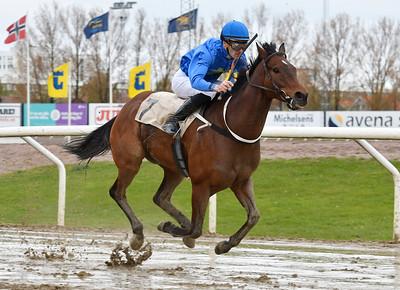 Ascot Hill vinner med Alessandro Guerrini  Jägersro 170510 Foto: Stefan Olsson / Svensk Galopp