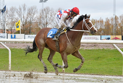 Perfect For You vinner med Per-Anders Gråberg Jägersro 170510 Foto: Stefan Olsson / Svensk Galopp