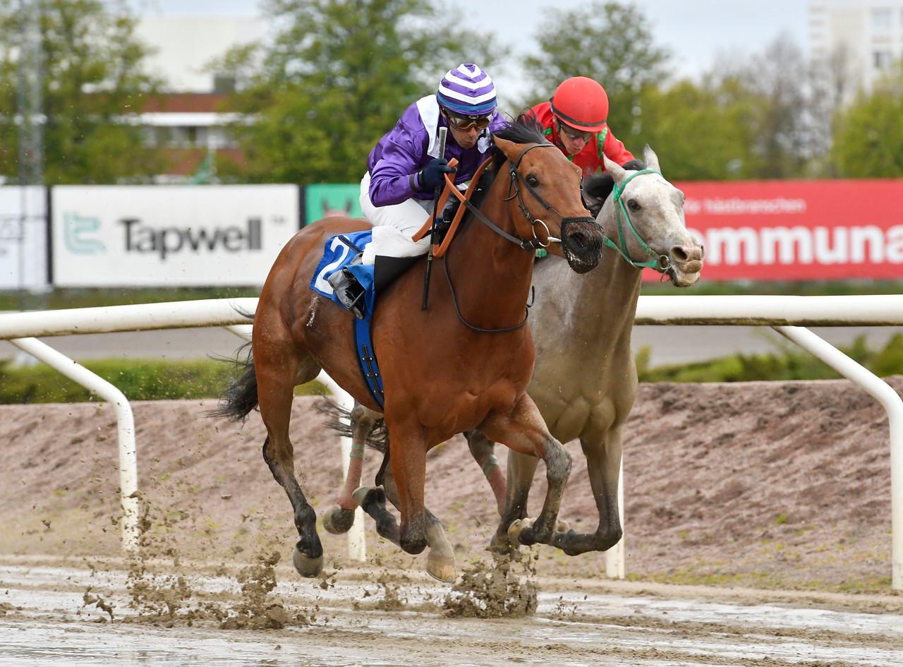 Roxy Sky och Martin Rodriguez vinner före Chantaraman Jägersro 170510 Foto: Stefan Olsson / Svensk Galopp