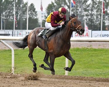 Brownie vinner med Oliver Wilson Jägersro 170523 Foto: Stefan Olsson / Svensk Galopp