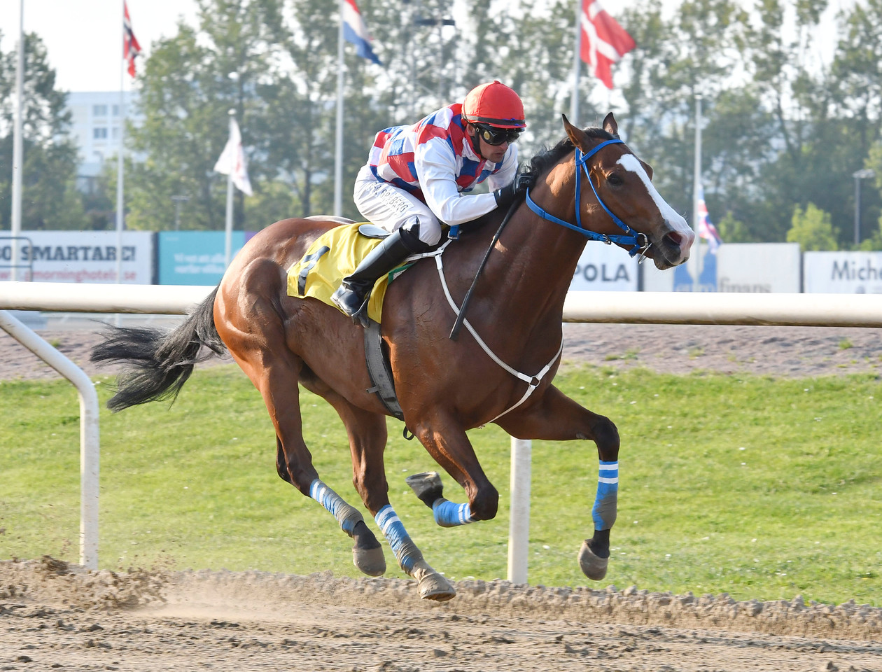 Perfect For You vinner med Per-Anders Gråberg Jägersro 170523 Foto: Stefan Olsson / Svensk Galopp
