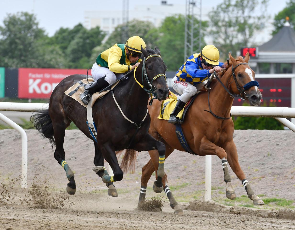 The Penny Horse och Valmir De Azeredo (t v) vinner knappt före Medicean's Miracle  Jägersro 170531 Foto: Stefan Olsson / Svensk Galopp
