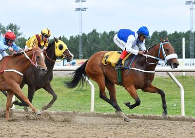 Free Ride och Alexandre Dos Santos vinner före stallkamraten River Plate  Jägersro 170531 Foto: Stefan Olsson / Svensk Galopp