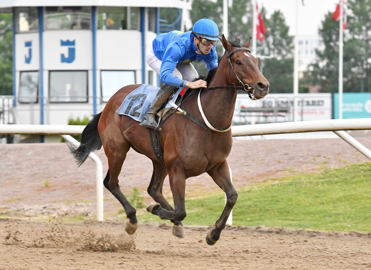 Ascot Hill vinner med Alessandro Guerrini Jägersro 170615 Foto: Stefan Olsson / Svensk Galopp