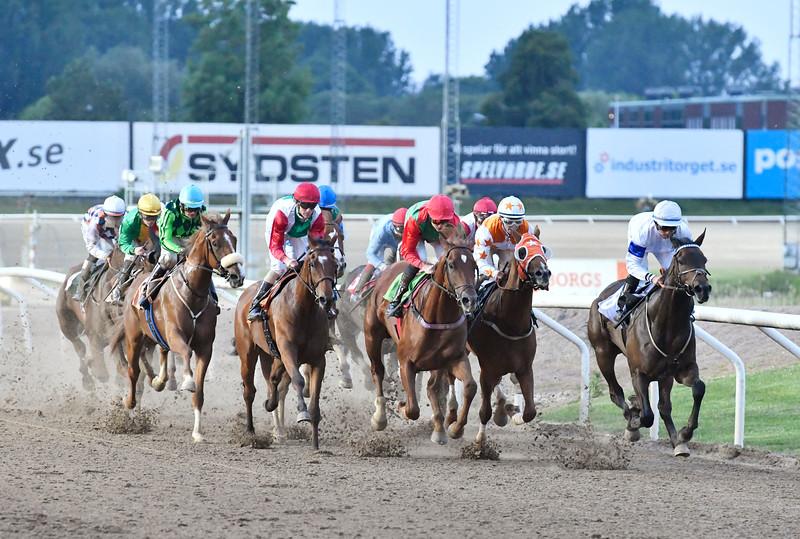 Fältet i Svenskt Derby Trial med dryga varvet kvar Jägersro 170615 Foto: Stefan Olsson / Svensk Galopp