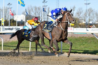Savannah Dream vinner med Andres Chavez Jägersro 191030 Foto: Stefan Olsson / Svensk Galopp                            Foto: Stefan Olsson / Svensk Galopp