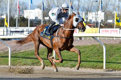 Nocentsinkentucky vinner med Elione Chaves  Jägersro 191030 Foto: Stefan Olsson / Svensk Galopp                            Foto: Stefan Olsson / Svensk Galopp