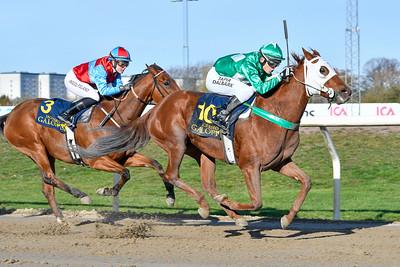 Ruby Starlight vinner med Andreas Tapia Dalbark  Jägersro 191030 Foto: Stefan Olsson / Svensk Galopp                            Foto: Stefan Olsson / Svensk Galopp