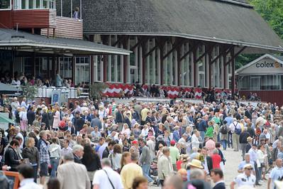 Stor publik på Derbydagen| Klampenborg 110626  Foto: Stefan Olsson / Svensk Galopp