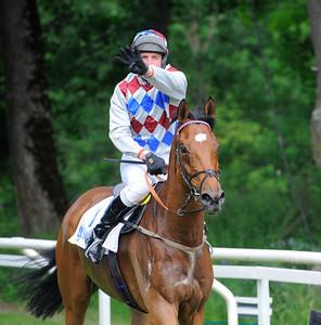 Henrik Engblom var säker på att Omoto Sando vunnit Champion Hurdle för fjärde gången.   Strömsholm 140615    Foto: Stefan Olsson / Svensk Galopp