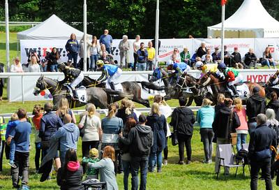 Hästarna i lopp 3 passerar publikplats | Strömsholm 160611 | Foto: Stefan Olsson / Svensk Galopp