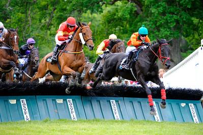Champion Hurdle: Taurito före Vicody och Faconettei | Strömsholm 160611 | Foto: Stefan Olsson / Svensk Galopp