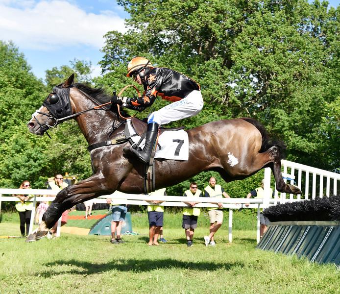 Jockeyklubbens Novishäck Strömsholm 170617 Foto: Stefan Olsson / Svensk Galopp