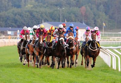 Fältet i Breeders' Trophy Classic med varvet kvar till mål | Täby Galopp 110827 Foto: Stefan Olsson / Svensk Galopp
