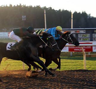 The Wicked Lord tar en knapp seger under Luis Santos | Täby 131211 | Foto: Klara Röstlund