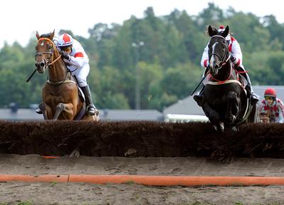 Lavirdan (t h) och Amber Hill (t h) hoppar sista hindret sida vid sida | H M KONUNGENS PRIS | Täby 110911 |  Foto: Stefan Olsson / Svensk Galopp