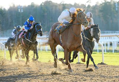 Crown of Creation vinner med Madeleine Smith | Täby 111116 Foto: Stefan Olsson / Svensk Galopp
