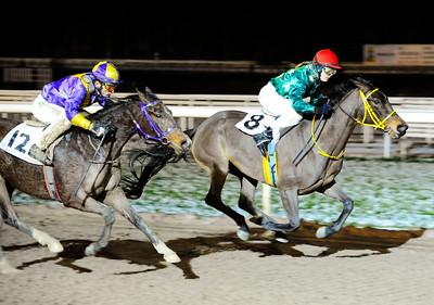 Sweet Dauphine och Catherine Weilby vinner före Neira Royal   Täby 111218    Foto: Stefan Olsson / Svensk Galopp