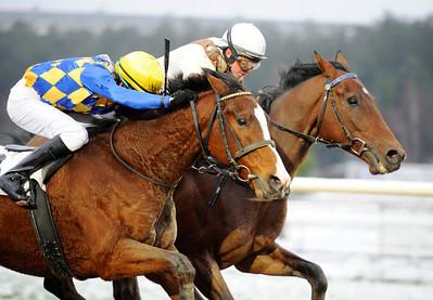 Theocritus och Manuel Santos vinner före Windy Gap   Täby 111218    Foto: Stefan Olsson / Svensk Galopp