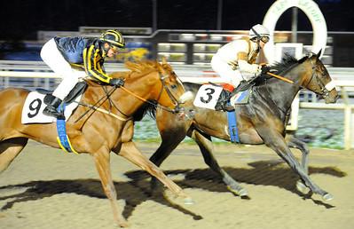 Dandy's Hero och Rebecca Colldin vinner före Puyol   Täby 111218    Foto: Stefan Olsson / Svensk Galopp