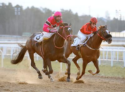 Muguru och Hillevi Ljungquist vinner före You Callin My Name | Täby 120108 | Foto: Stefan Olsson / Svensk Galopp
