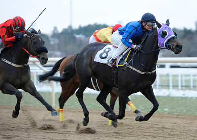 Black Magic Women vinner med Fabienne De Geer | Täby 120115 |  Foto: Stefan Olsson / Svensk Galopp