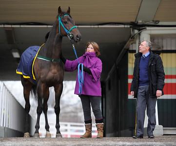 Champion 2011. Major Calloway tillsammans med Jenny Eustace och Alex McLaren | Täby 120115 |  Foto: Stefan Olsson / Svensk Galopp